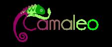 logo camaleo